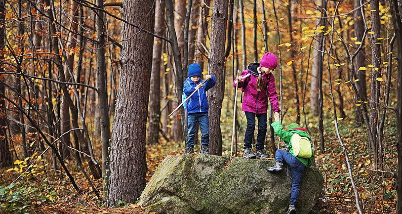 Kinder spielen mit Stöcken im Wald